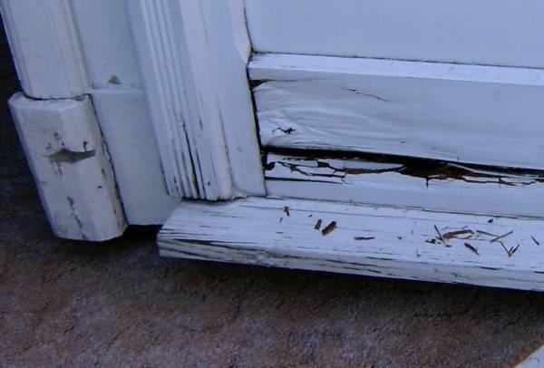 Bauimnetz fenster und t ren for Fenster 0 5 ug