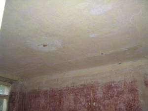Grundierung Wand Trockenzeit Good Grundierung Fr Farbe Und Tapete